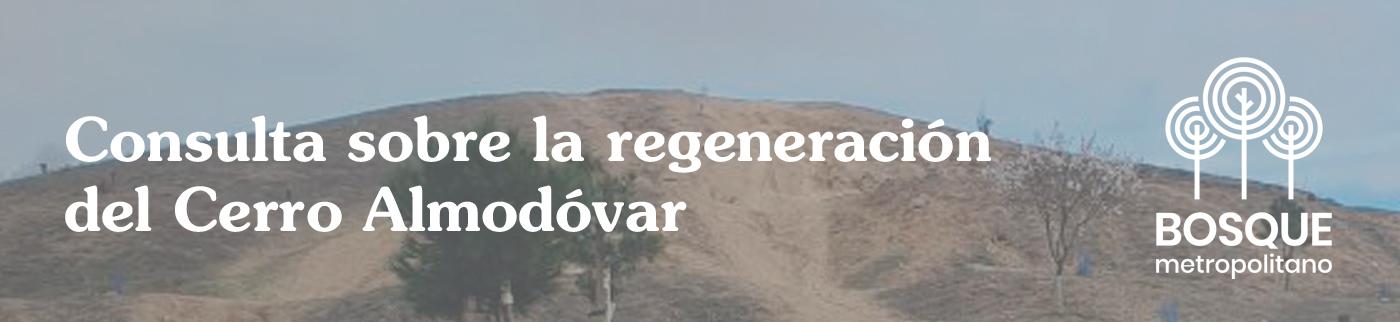 Consulta Pública sobre el Cerro Almodóvar