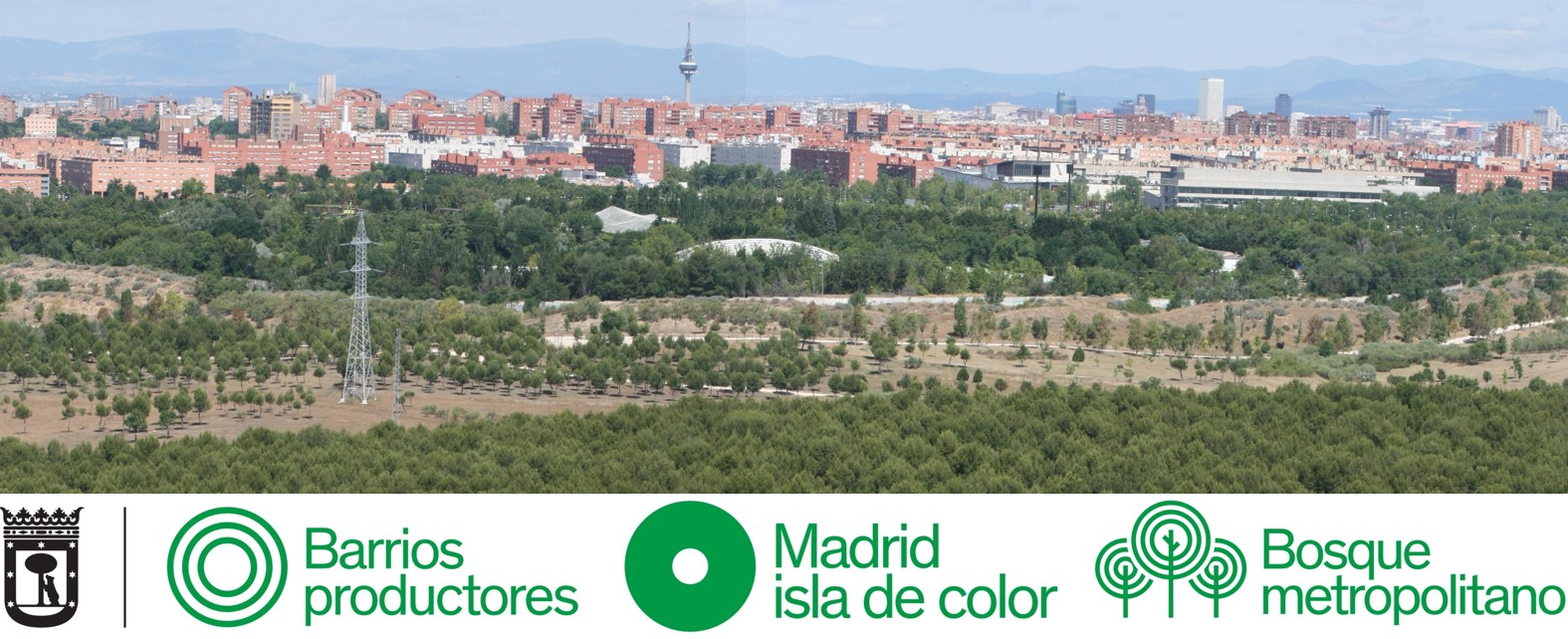 Madrid Isla de Color