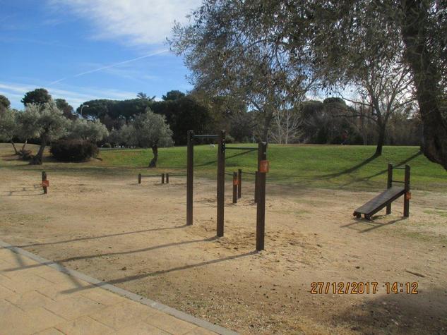 Mejorar Area De Calistenia En El Parque Juan Carlos I